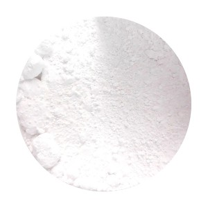 BIOBASE PIGMENT IN WHITE POWDER 25 GR (PRICE FOR PACK)